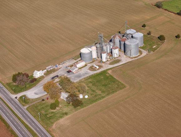 Trappe Grain