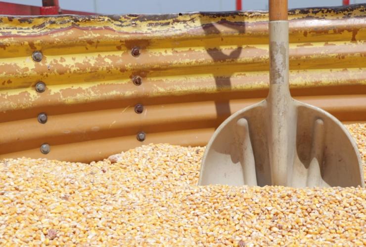 An inside look at a Grain Bin Rescue Kit